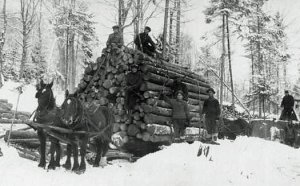 eGNL_Logging_with_horses